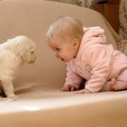 Zašto je dobro da dijete odrasta uz kućnog ljubimca?